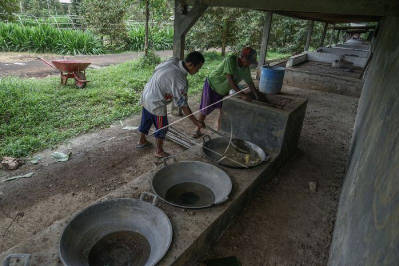 Pemanfaatan dana desa