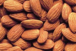 Studi : Almond bagus kurangi risiko kardiovaskuler penderita diabetes tipe 2