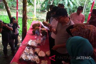 Pemkab Banyumas siap fasilitasi pengembangan durian lokal