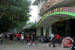 Kunjungan wisata GL Zoo turun 10 persen
