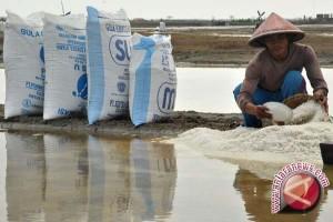 Bantul dorong pengembangan budi daya garam pantai