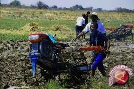 Pemkab bantu alat pertanian kepada kelompok tani -