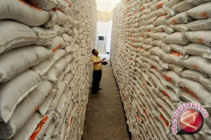 Pemkab Bantul : ketersediaan beras mencukupi akhir 2017