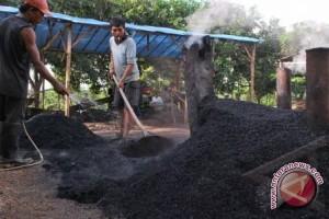 Mahasiswa UGM berdayakan petani Madura