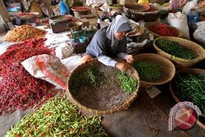 Produksi cabai di Kulon Progo 18.805 ton