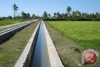 Distan DIY imbau kabupaten segera perbaiki irigasi