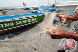 Kepiting Pengkok resahkan nelayan Gunung Kidul