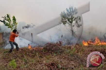631 titik api menyebar di Sumatera
