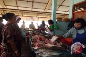 Harga ikan di Pantai Baron alami kenaikan