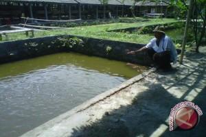 Petani ikan Mina Ngremboko diikutkan BPJS Ketenagakerjaan
