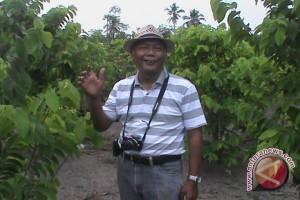 Petani buah naga organik kualahan penuhi permintaan