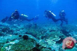 RI-AS fokus konservasi habitat laut Indonesia