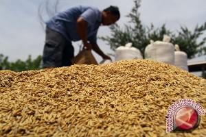 Warga mendirikan koperasi untuk menyerap panen petani