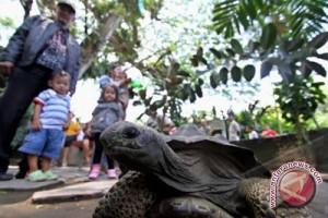 Ribuan wisatawan kunjungi Gembira Loka Zoo