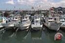 Bantul dorong nelayan manfaatkan kapal ikan besar