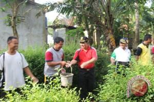 BBGRM XIII Kulon Progo fokus kegiatan kemasyarakatan
