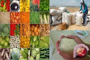 Penggunaan pestisida nabati disarankan agar pangan bebas pencemar