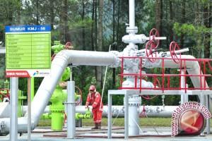 Geothermal dapat mendukung kemandirian bangsa di sektor energi