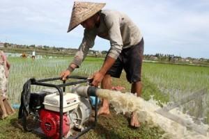 Petani dapat bantuan pompa air tanpa Motor