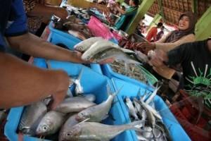 DKP Bantul tertibkan pencatatan produksi ikan nelayan