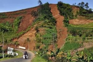 Masyarakat di Perbukitan Prambanan diimbau waspada longsor