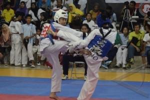 Taekwondo - Atlet Pelatnas berlatih di Korea demi olimpiade