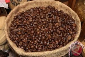 Kulon Progo rehabilitasi 15 hektare tanaman kopi
