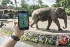 GL Zoo persilahkan wisatawan berburu Pokemon