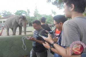 Gl Zoo mulai berbenah hadapi libur lebaran