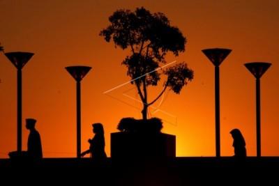 MUI: Masyarakat awasi anak cegah 'asmara subuh'