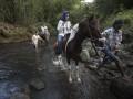 Wisata berkuda susuri sungai