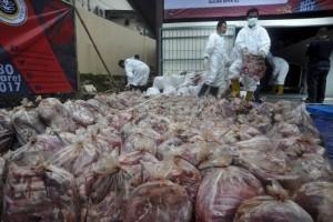 Satgas Pangan amankan dua ton daging celeng