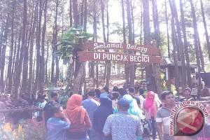Dlingo akan gelar jelajah wisata kenalkan potensi
