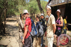 TN Komodo klaim kunjungan wisatawan terus meningkat
