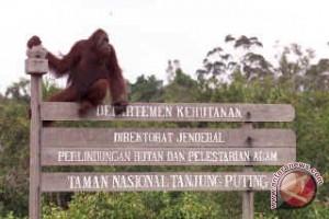 Kalteng Fokus Kembangkan Ekowisata Alam