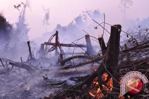 BPBD Kotim Latih Petugas Pemadam Kebakaran di Perusahaan