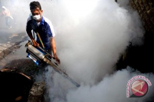 Waduh! Sudah Satu Kecamatan Di Seruyan Ditetapkan KLB DBD