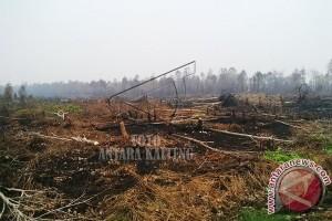 Waduh! Ada 3 Titik Lahan Gambut Terbakar di Desa Handil Sohor