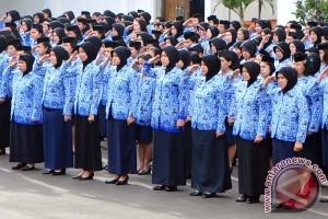 Akhirnya! 162 Pendaftar Orang Lulus Jadi Pegawai Kontrak Pemkab Seruyan