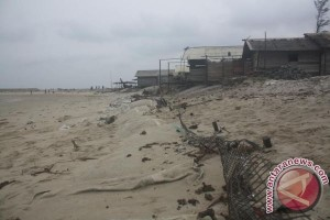 Objek Wisata Pantai Ujung Pandaran Tergerus Abrasi