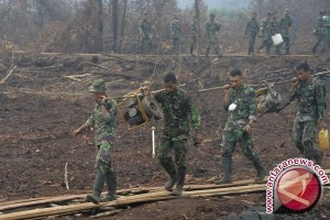 Tahun Ini Ditarget Restorasi 400 Ribu Ha Lahan Gambut di 7 Provinsi