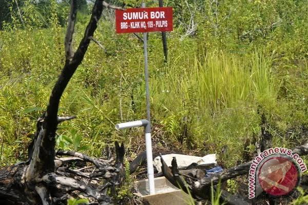 BRG: Kalteng Bangun 2.000 Sumur Bor di Lahan Gambut