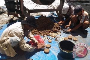 Sip! Peternak Sukamara Diajari Buat Pakan Sapi Dari Limbah Sawit