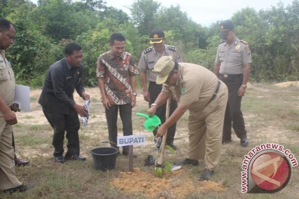 15 Ribu Bibit Pohon Ditanam di 5 Kecamatan di Sukamara
