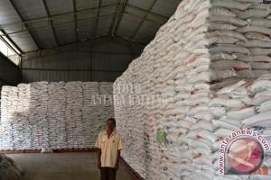 Kotim Targetkan Produksi Beras 55.000 Ton