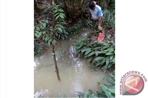 PT BB Diduga Cemari Sungai Ampeng, PT BB Serahkan Urusan ke BLH Bartim