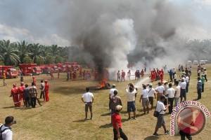 PT Maju Aneka Sawit Gencar Cegah Kebakaran Hutan dan Lahan