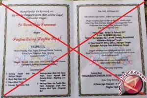 Akhirnya! Ritual Pernikahan Pangkalima Burung Dibatalkan