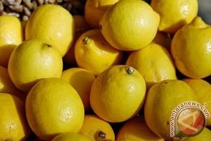 Ini Manfaat Minum Air Lemon Setiap Pagi