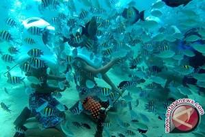 Bantu Nelayan Tangkap Ikan, China Kembangkan Robot Bawah Laut
